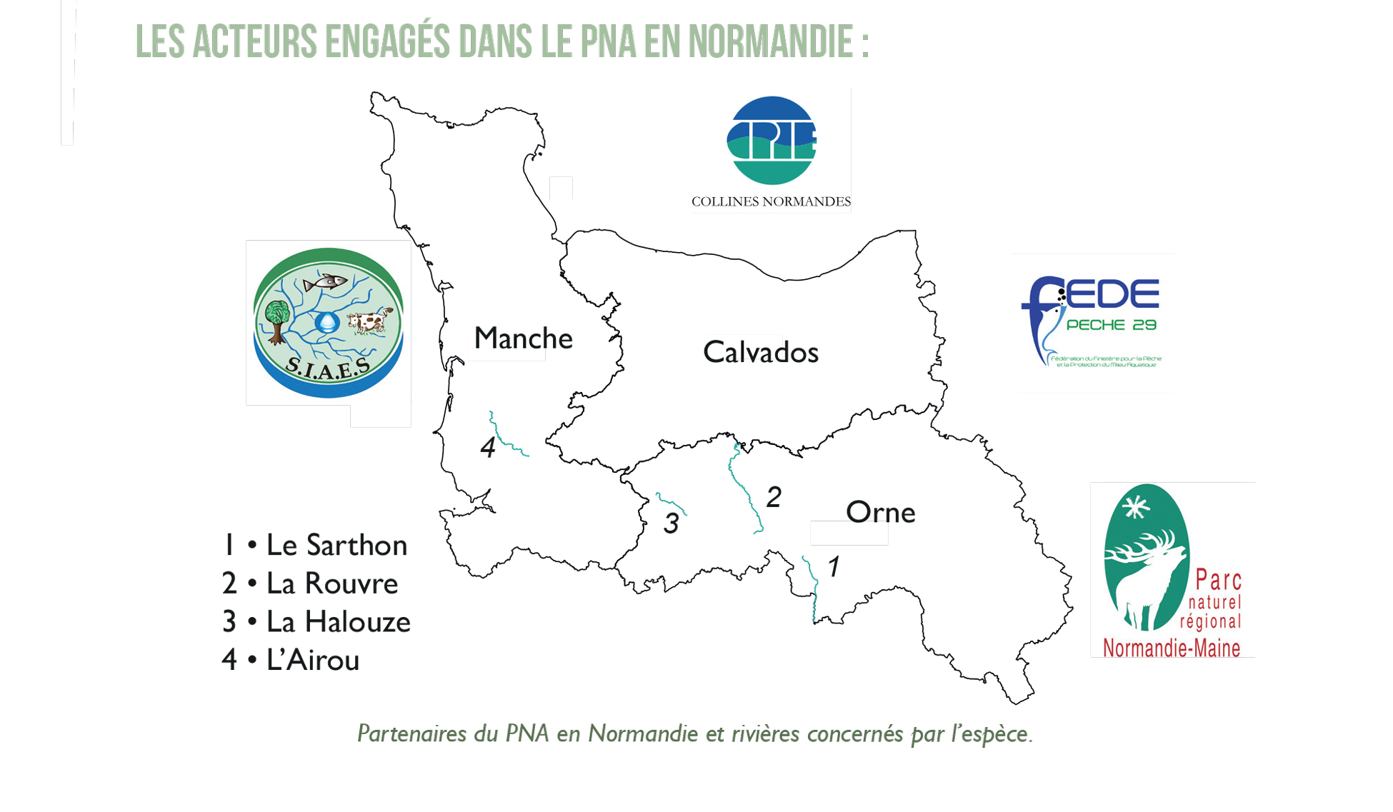 Les partenaires du PNA Mulette en Normandie