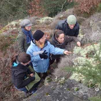 Le CPIE 61 en formation lichens