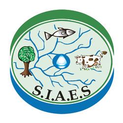 Logo SIAES 2013