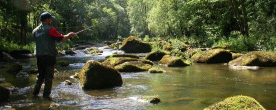 Peche sur les rivieres de Suisse normande