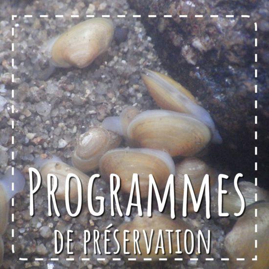 Programmes de préservation en Normandie