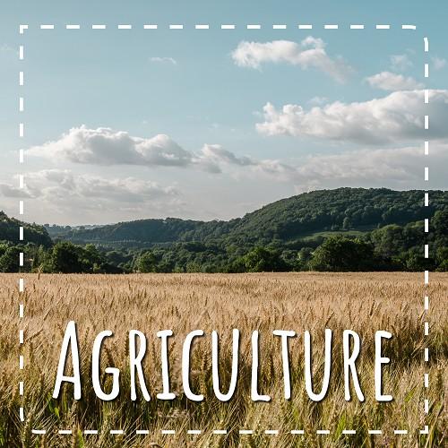 Agriculture et mesures agro-environnementales
